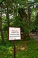 Курортний парк DSC 0285.jpg