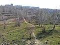 Лог зеленеет - panoramio.jpg