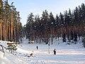 """Лыжные трассы. Турбаза """"Связист"""" - panoramio.jpg"""