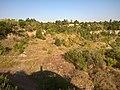 Местность вблизи гранитного карьера - panoramio (4).jpg