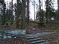 Подмосковье, Воскресенское. Осенний парк - 03-11-2007г. - panoramio.jpg