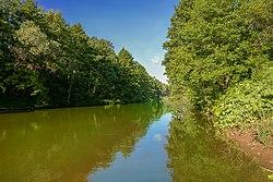 Река Боровка, Национальный парк Бузулукский бор.jpg