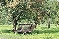 Скамейка под рябинами - panoramio.jpg
