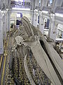 Скелет синего кита 1.jpg