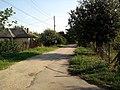 Улица Преслав в с. Ново село, Видинско.jpg