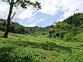 三江口山间草坪 - panoramio.jpg