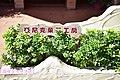台北-萬里豆漿伯店 (31021000905).jpg