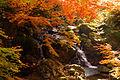 春日渓谷 - panoramio.jpg
