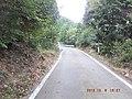 林道と交差(東海自然歩道) - panoramio (1).jpg