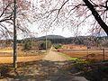 真原の桜並木から田舎道を見る - panoramio.jpg