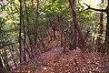 阿寺城 三重堀切 - panoramio (2).jpg