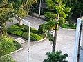 鹤山一中校园 - panoramio.jpg