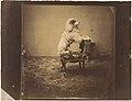 -Empress Eugénie's Poodle- MET DP163234.jpg