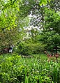 0166 Stoke Bishop Open Gardens (14605356635).jpg