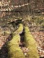 05-04-03-plagefenn-by-RalfR-33.jpg