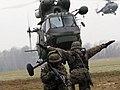 11 Dywizja Kawalerii Pancernej - rok 2010 (01).jpg