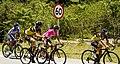 12 Etapa-Vuelta a Colombia 2018-Ciclistas en el Peloton 13.jpg