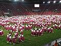 15. sokolský slet na stadionu Eden v roce 2012 (50).JPG