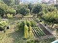 16033 Lavagna GE, Italy - panoramio (7).jpg