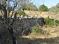 17-09-2017 Dry stone wall, Canais, Albufeira.JPG