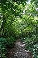180727 Nasu Heisei-no-mori Forest Nasu Japan06.JPG