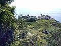 19018 Vernazza, Province of La Spezia, Italy - panoramio (33).jpg
