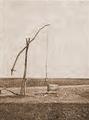 1910 Fantana in Campia Brailei - Druica Bordei Verde.png