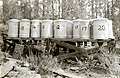 1930. Insect cages used to collection slash insects in ponderosa pine slash relations study. Klamath Falls, Oregon. (34229210893).jpg