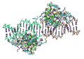 1IF1 Interferon Regulatory Factor 1 (Irf-1) Complex With Dna03.png