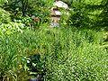 2008 07 Botanical Garden Meran 70060R0105.jpg