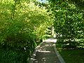 2008 07 Botanical Garden Meran 70080R0107.jpg