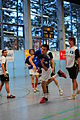 2010-01-16-handball-by-RalfR-30.jpg