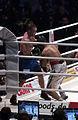 2011 boxing event in Stožice Arena-Dejan zavec V.jpg