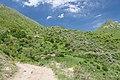 2014 Prowincja Wajoc Dzor, Trasa Wernaszen - Spitakawor (127).jpg