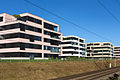 2015-Altendorf-Bitzi.jpg