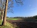 20200119 Zicht vanaf de Hondsrug (vanaf de Lemenweg nabij Drouwen.jpeg