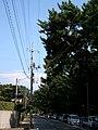 2 Chome Nijigahama, Hikari-shi, Yamaguchi-ken 743-0022, Japan - panoramio.jpg