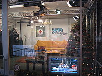 Studio with Christmas tree and golden-yellow couch