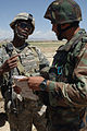 508th Paratroopers, Afghan Soldiers Combine Strength for Operation Maiwan DVIDS48272.jpg