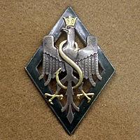 5odznaka 5 Dywizja Syberyjska.jpg