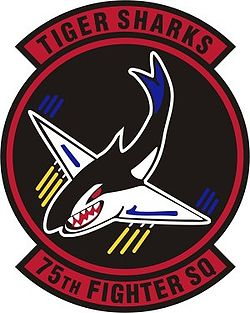 75th Fighter Squadron.jpg