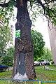 80-385-5011 Kyiv Krister Oak SAM 0053.jpg