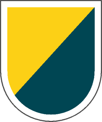 8th Special Forces Group (United States) - 8th Special Forces Group beret flash