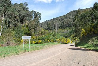 A1 Mine Settlement - Entering A1 Mining Settlement from Jamieson