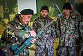 ANA conducts handheld mine detector training in Zabul 140204-Z-HP669-004.jpg