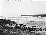 A Heavy Sea, Kiama (4903268241).jpg