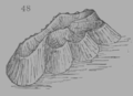 A Treatise on Geology, figure 48.png