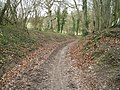 A deep old lane in early spring - geograph.org.uk - 1775827.jpg