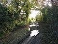 A muddy track - geograph.org.uk - 1582867.jpg