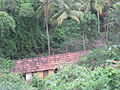 A typical view of a village in Goa.JPG